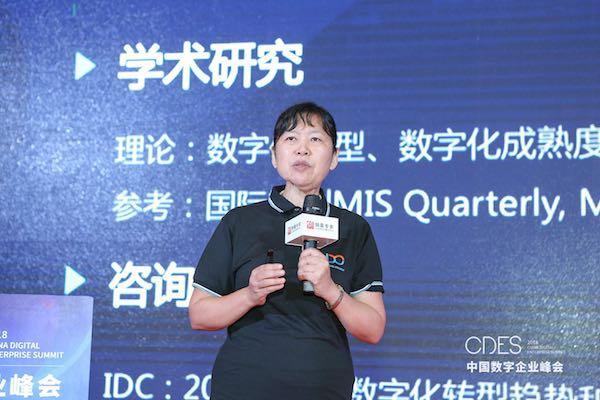 研究报告解读:《中国数字企业框架与指标体系》