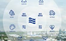 数字京博战略助力企业经营管理高质量发展