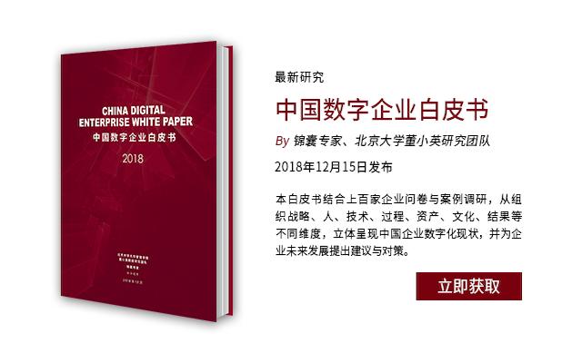 2019中国数字企业白皮书