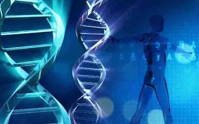 深圳易链科技:技术基因孕育的创新型企业