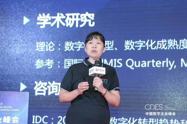 北大光华董小英:深度解读《中国数字企业框架与指标体系》